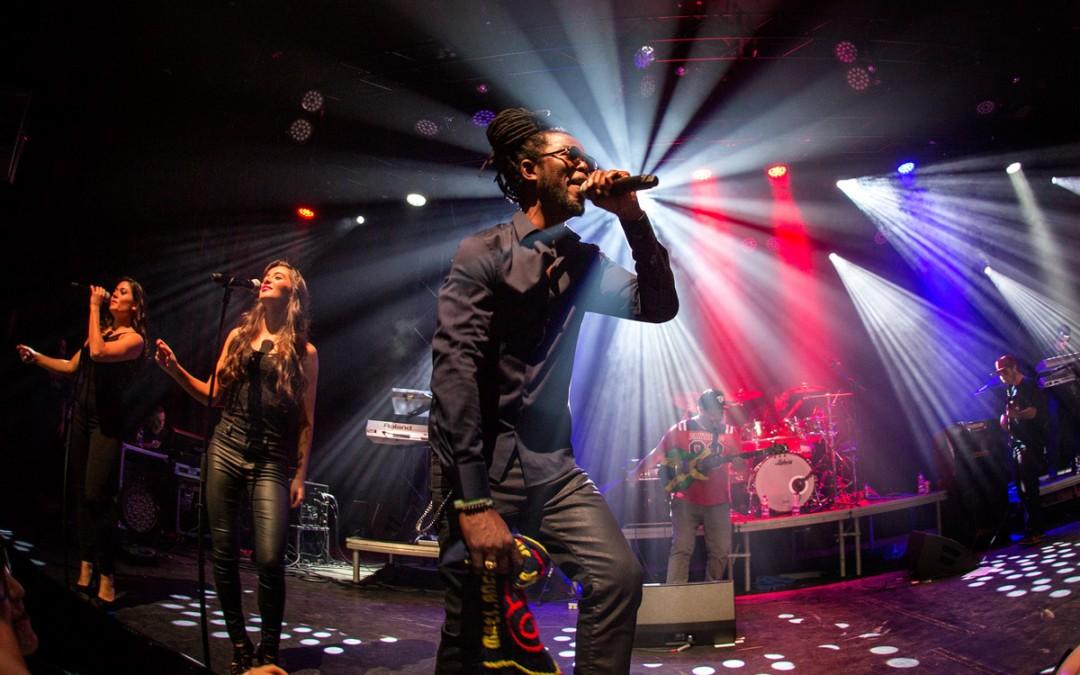 elation news: Neushoorn nightclub
